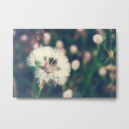 Lazy Summer Metal Print
