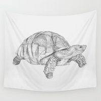 tortoise Wall Tapestries featuring Tortoise by Kyle Naylor