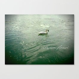 Wisdom found - white swan in Lyon, France Canvas Print