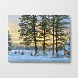 Misty Pine Sunset Metal Print