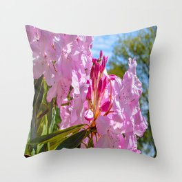 The Lost Gardens of Heligan - Pink Rhododendron Throw Pillow