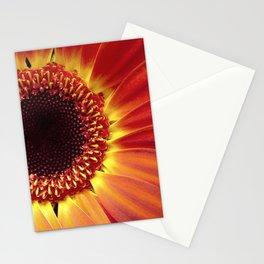 Harvest Sunflower Stationery Cards
