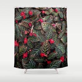 Furtive Flames Shower Curtain