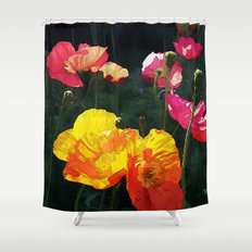 Poppies Four Shower Curtain