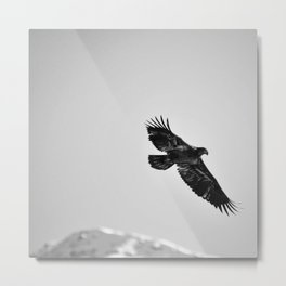 Libre comme l'air Metal Print