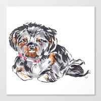 shih tzu Canvas Prints featuring Shih Tzu by bellandpixel