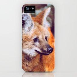 Amber Gaze iPhone Case