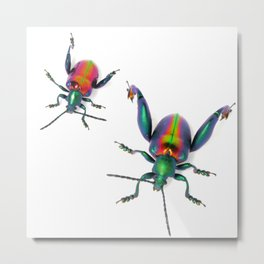 Frog-legged Pair Metal Print