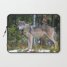 Wolf encounter in Jasper National Park Laptop Sleeve