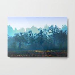 Skragley Oak Trees in the Laguna de Santa Rosa, Sonoma County, California Metal Print