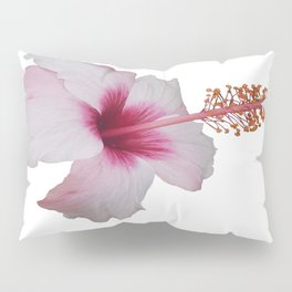 Pale Pink Hibiscus Tropical Flower No Text Pillow Sham