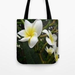 Closeup Frangipani with Natural Garden Background Tote Bag
