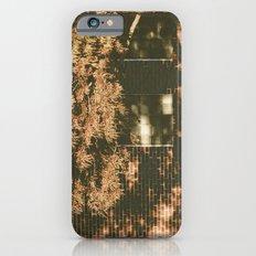 autumn tree, shadow Slim Case iPhone 6s