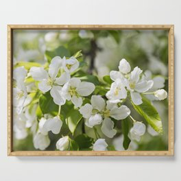 Crabapple Blossoms 13 Serving Tray