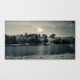 AT The Park... Canvas Print