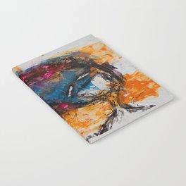 Expresión 09 Notebook