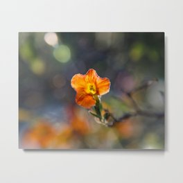 Tiny Orange Bokeh Delight Metal Print