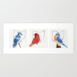 Birds of Ohio Art Print