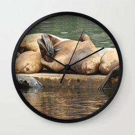 Sleeping Sea Lions Photography Print Wall Clock