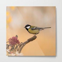 Songbird (Great Tit) on Autumn Day #decor #society6 #buyart Metal Print