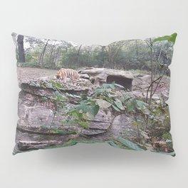 Tigers Pillow Sham