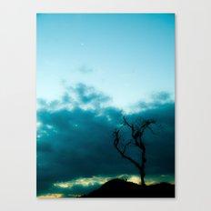 Dark Tree Canvas Print