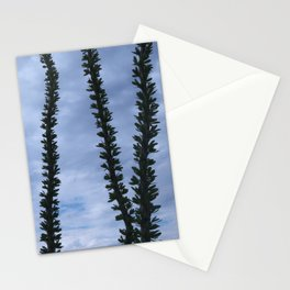 Ocotillo Sky No. 3 Stationery Cards