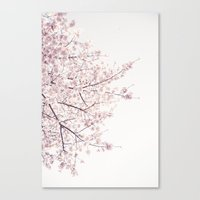 cherry blossom Canvas Prints featuring cherry blossom by Neon Wildlife