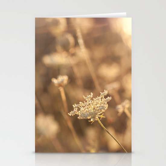 Sunflare Stationery Cards