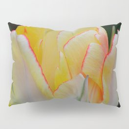 Red-Tipped Tulip by Teresa Thompson Pillow Sham