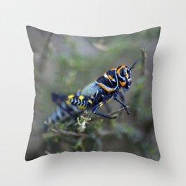 Colored Grasshopper Throw Pillow