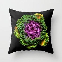 Ornamental kale Throw Pillow