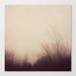 autumn atmosphere Canvas Print