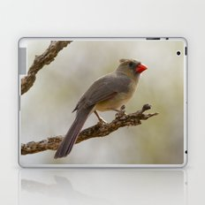 Here's Looking at You Kid Laptop & iPad Skin
