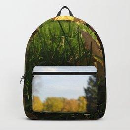 Last Vestiges of Fall Backpack