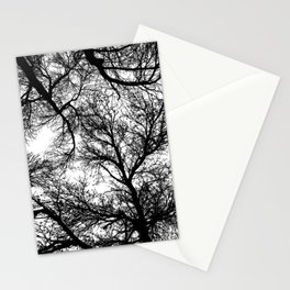Branches 4 Stationery Cards
