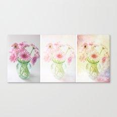 Gerbera Evolution Art Triptych Canvas Print