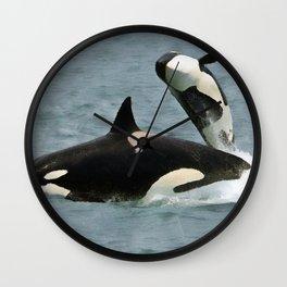 Playful Orcas Wall Clock