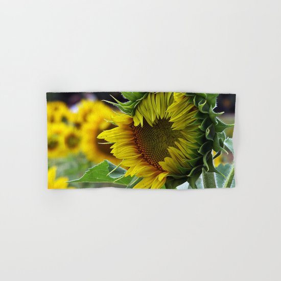 Sunflower Unfolds Hand & Bath Towel