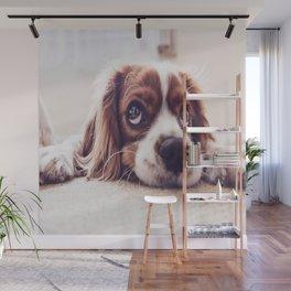 Bobby Dog Wall Mural