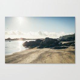 Tidepools in the Sun Canvas Print