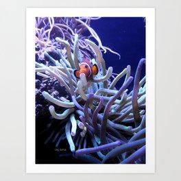 Clown Fish Anemone Art Print
