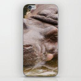 Huge bored Hippopotamus iPhone Skin