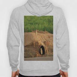 Burrowing Owls Hoody