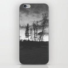 Altai Mountains iPhone & iPod Skin