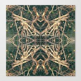 Mangrove Fun Canvas Print