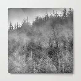 Dream woods. Into the woods Metal Print