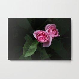 Pink and Dark Green Roses on Black Metal Print