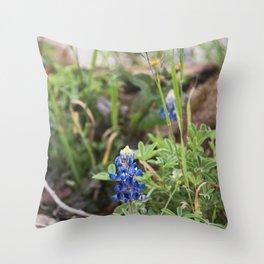 Texas Bluebonnets 11 Throw Pillow
