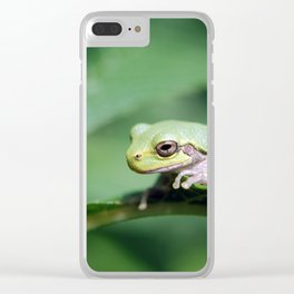 Gray Tree Frog Clear iPhone Case